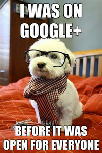 Google-plus-cute-dog-meme
