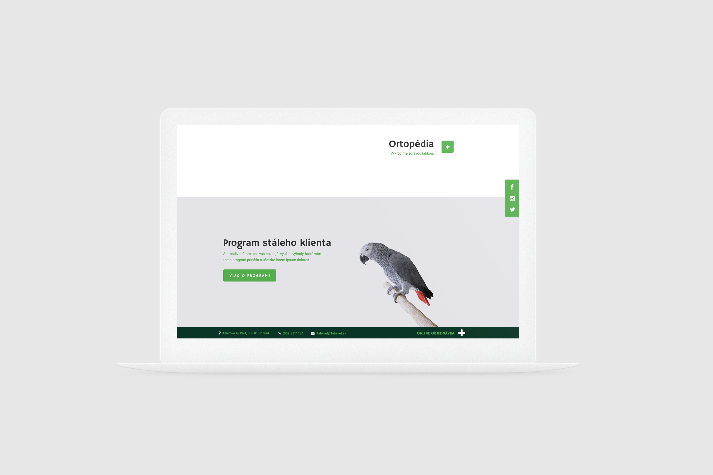 nová stránka tatravet čierny šedý papagáj na dreve